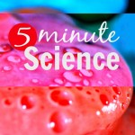 5minuteScience_pin