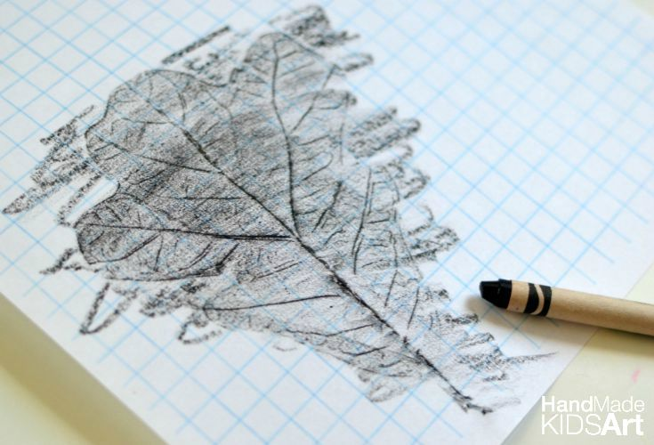 leaf rubbing graph 1